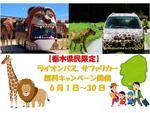 栃木県民限定でライオンバス・サファリカーが無料! 那須サファリパークにて6月1日~30日実施【東北自動車道 那須ICより車で約7.5km】
