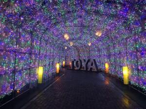 約40万球の電飾でライトアップ! 洞爺湖温泉のイルミネーショントンネル、11月1日から【道央自動車道 虻田洞爺湖 ICより約5km】